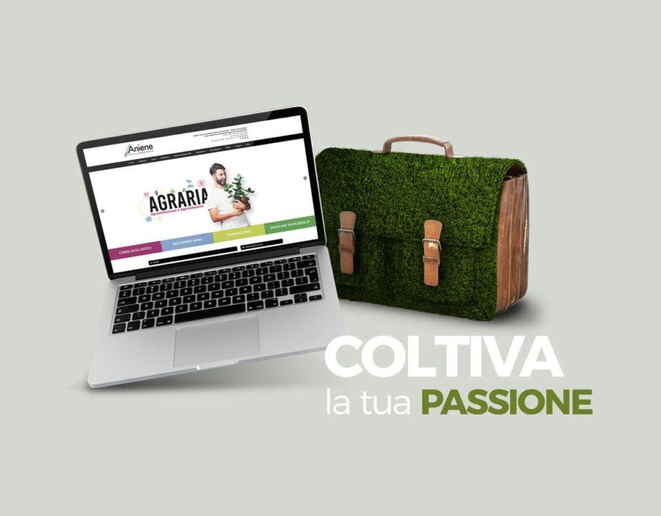 siti web Roma constant design